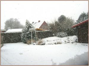 schnee-im-januar1