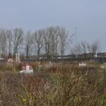 ruegenpark-20