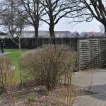 ruegenpark-21