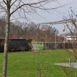 ruegenpark-22